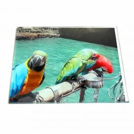 Plexi przeźroczysta z nadrukiem - bezpieczny obraz