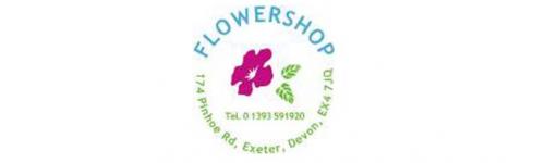 Logo i grafika