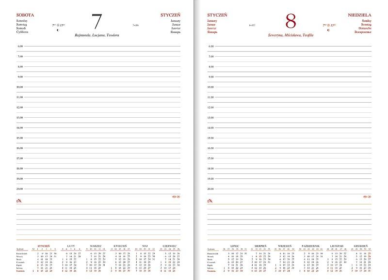 WN1210 Kalendarz A4,  dzienny VIVELLA