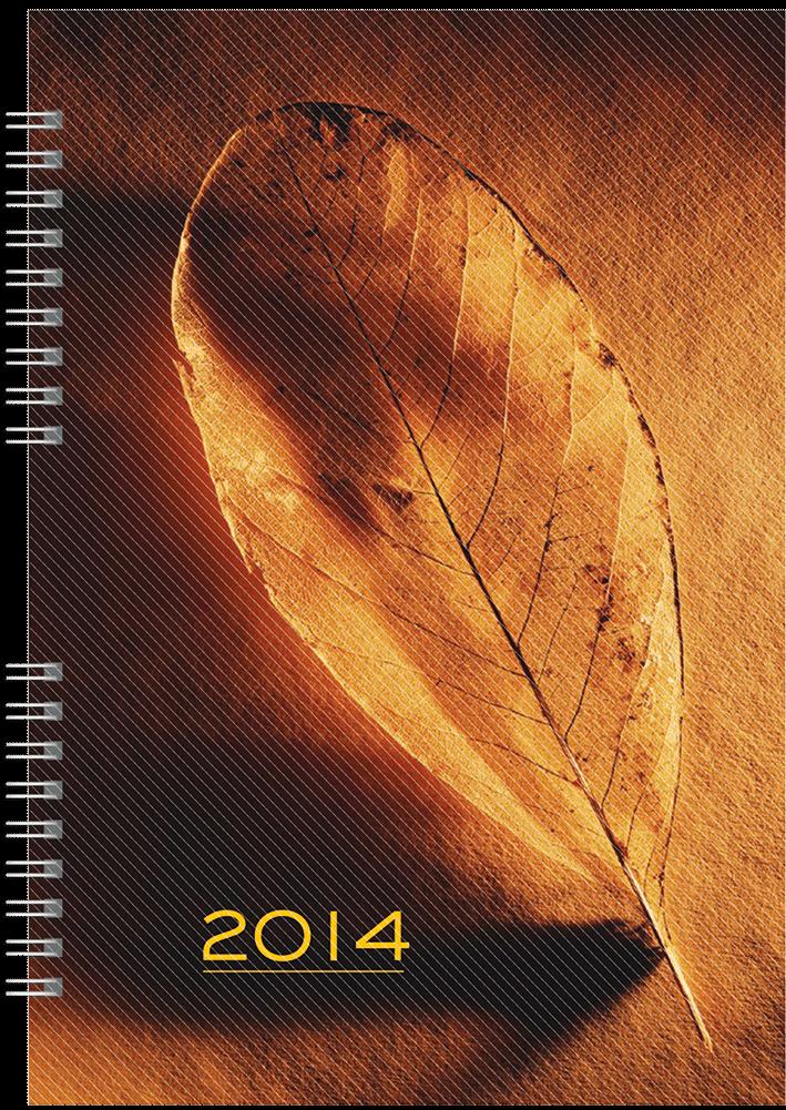 TS1 Kalendarz książkowy B5 Spiro